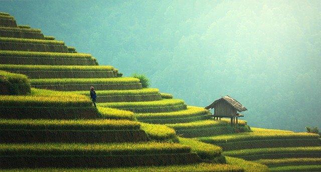 Un programme assez chargé pour Bali