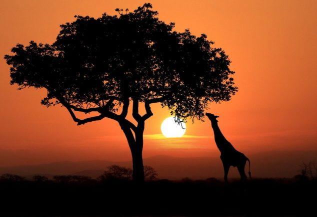 lieux incontournables kenya