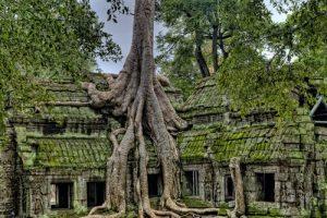 Le Cambodge, pays de culture et de traditions