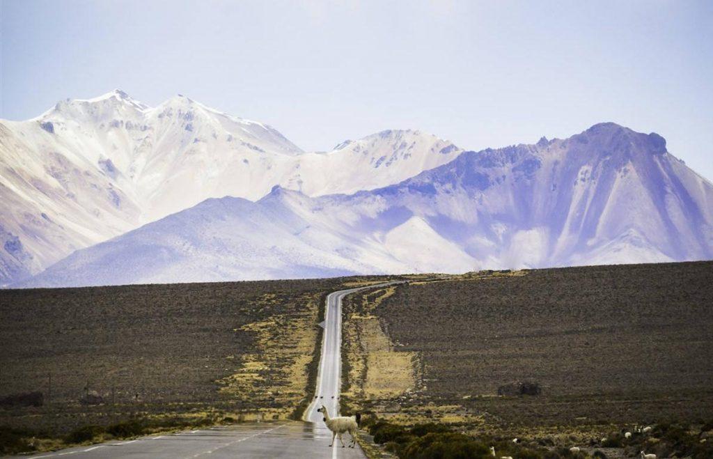 voir la Bolivie