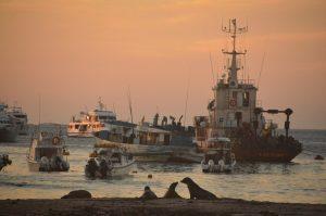 bateau Galapagos