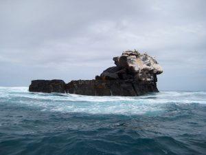 ocean Galapagos