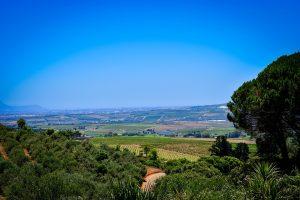 Partir pour Stellenbosch en mars