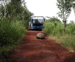 visiter Galapagos