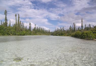 La riviere salée