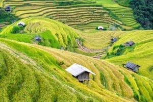 Petit coin de paradis au sud du Vietnam