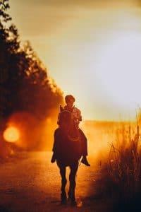 cheval le soir