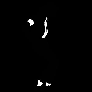 Les activités et programmes du spectacle Michaël Jackson de Las Vegas