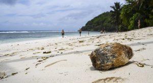 Voici la liste de vos activités aux Seychelles en Juin