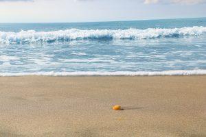 plage San José