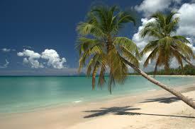 Les activités que propose la ville des Trois Îlets en Martinique