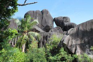 Quel est le programme pour les Seychelles en Septembre ?