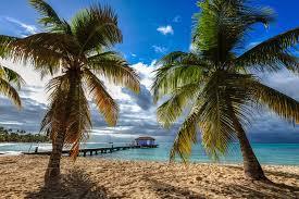 Les principaux sites touristiques de Trois Îlets