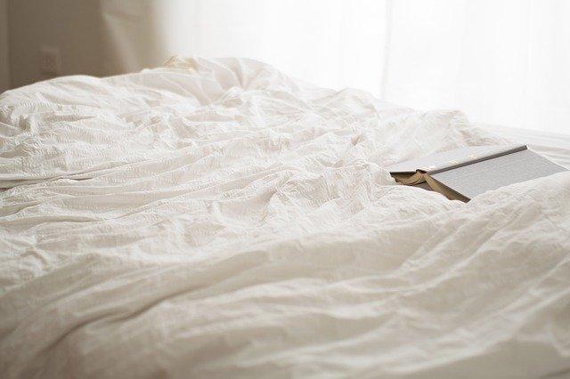 La lutte contre les punaises de lit est longue et laborieuse