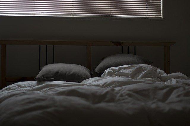 Les punaises de lit sont des insectes presque invisibles