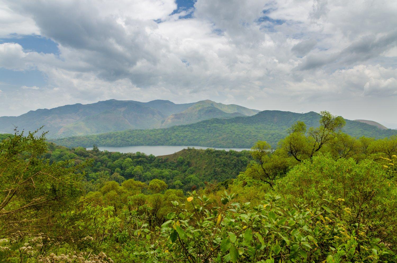 paysage cameroun